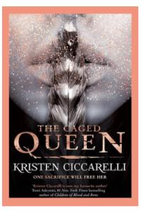 book cover (19)