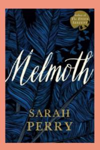 book cover (92)